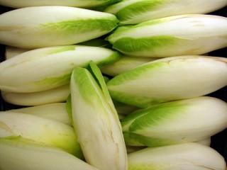Эндивий (цикорный салат)