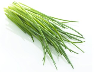luk-green7