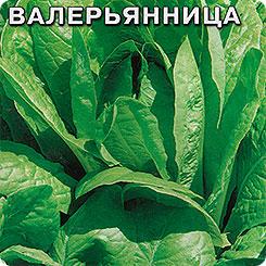 valeryannitsa1